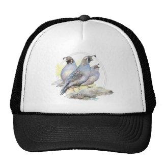 Pájaro original de las codornices de California de Gorro
