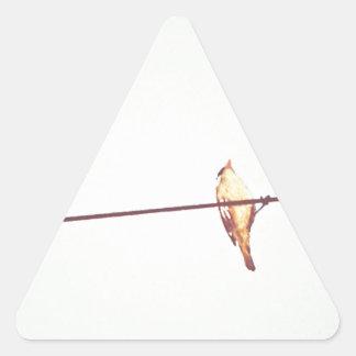 Pájaro Pegatina Triangular