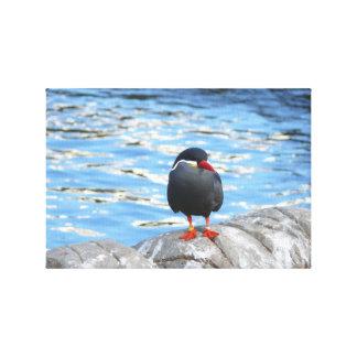 Pájaro por el agua lienzo envuelto para galerías
