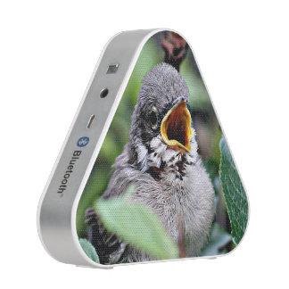 pájaro precioso altavoz bluetooth