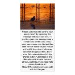 Pájaro que camina en la puesta del sol tarjetas fotograficas