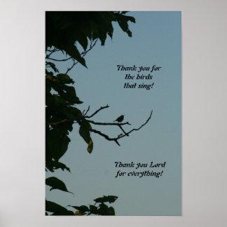 ¡Pájaro que canta, gracias señor! poster