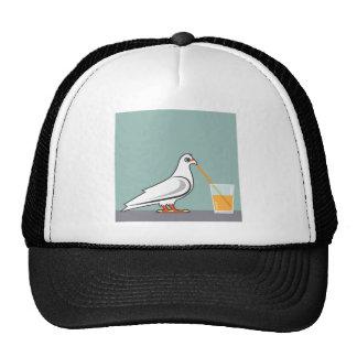 Pájaro que sorbe una bebida gorra
