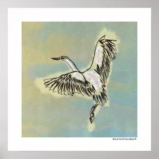 Pájaro que vuela el cielo azul Deco original que Póster