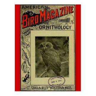 Pájaro revista 8 de junio de 1903 postal