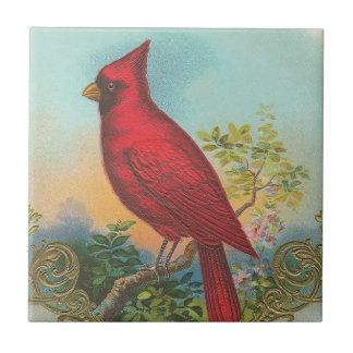 Pájaro rojo azulejo cuadrado pequeño