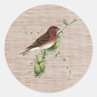 Pájaro rojo bonito en fondo natural del árbol de pegatina redonda