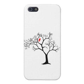 Pájaro rojo cardinal en árbol del invierno Nevado iPhone 5 Funda