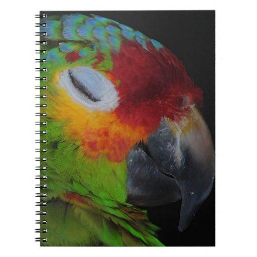Pájaro rojo de Lored el Amazonas que guiña el cuad Libro De Apuntes Con Espiral