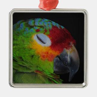Pájaro rojo de Lored el Amazonas que guiña el orna Ornamentos Para Reyes Magos