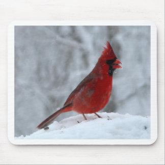 Pájaro rojo en la nieve tapetes de ratones