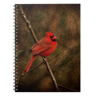 Pájaro rojo libros de apuntes con espiral