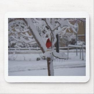 Pájaro rojo (tormenta del invierno) tapete de raton