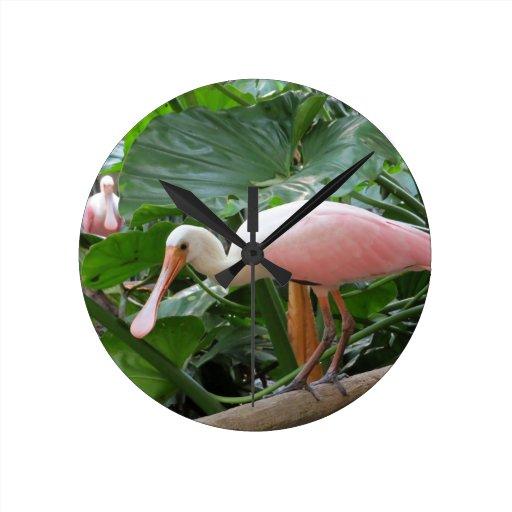Pájaro rosado del Spoonbill rosado Reloj De Pared