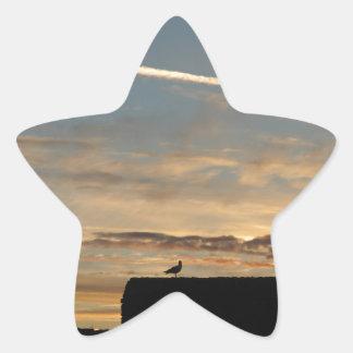 Pájaro silueteado contra el sol poniente pegatina en forma de estrella
