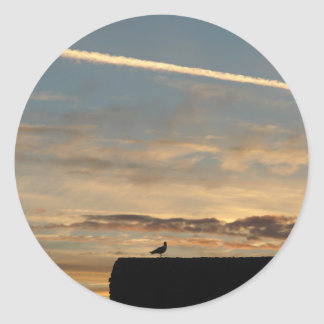 Pájaro silueteado contra el sol poniente pegatina redonda