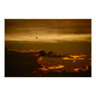 Pájaro solitario en un cielo de Firey (poster)