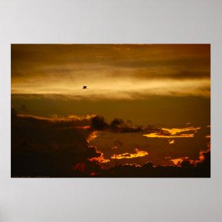 Pájaro solitario en un cielo de Firey (poster) Póster