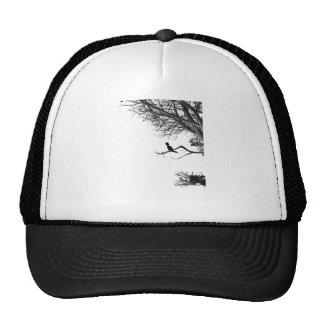 Pájaro solo gorras de camionero