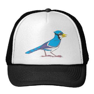 Pájaro sonriente del arrendajo azul gorro de camionero