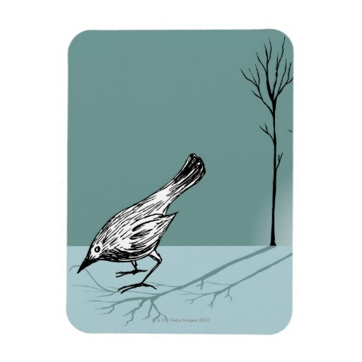 Pájaro temprano imanes rectangulares