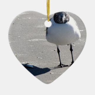 Pájaro tonto de la playa ornamentos de reyes