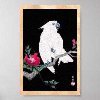 Pájaro tropical blanco japonés fresco del loro de impresiones