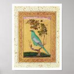 Pájaro verde, Mughal (aguazo en el papel) Póster