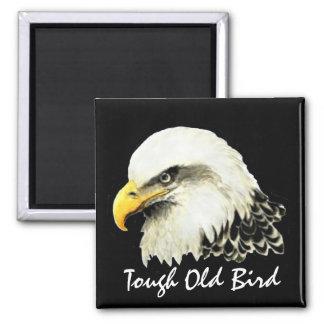 Pájaro viejo duro Eagle calvo del feliz cumpleaños Imán Cuadrado