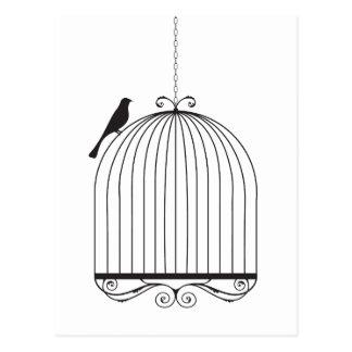 Pájaro y Birdcage Tarjetas Postales