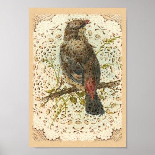 Pájaro y Doilie del vintage Posters
