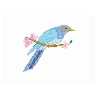 pájaro y flores bonitos del cuco postales