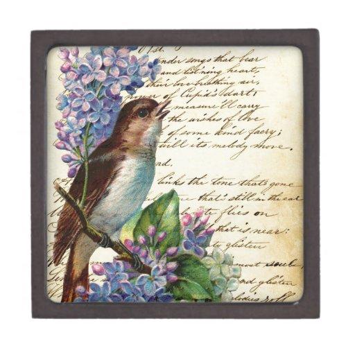 Pájaro y tipografía I del Victorian Cajas De Joyas De Calidad