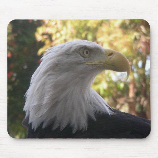 Pájaros 011 Eagle calvo Mousepad Tapete De Raton