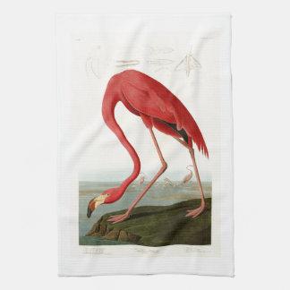 Pájaros americanos de Juan Audubon del flamenco de Toalla De Mano