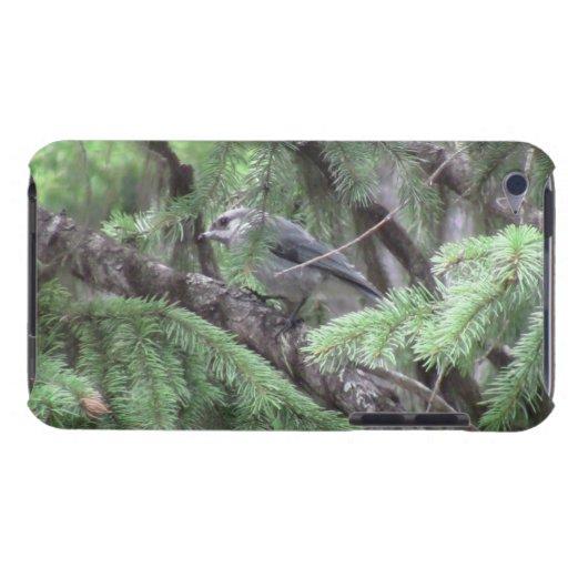 Pájaros Aves de los animales de la fauna de Koosko iPod Touch Case-Mate Cárcasa