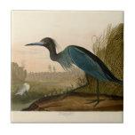 Pájaros azules de la garza de la grúa de Audubon d Azulejo Cuadrado Pequeño