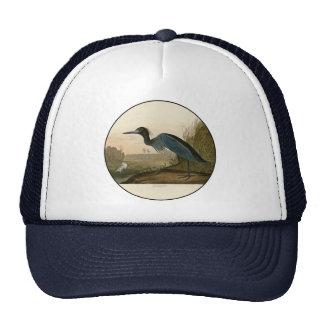 Pájaros azules de la garza de la grúa de Audubon Gorros Bordados