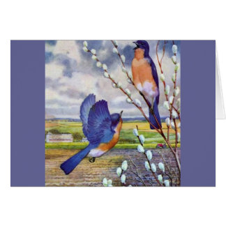 Pájaros azules tarjeta