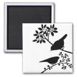 Pájaros blancos y negros imanes de nevera