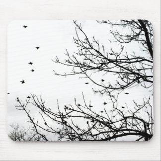 Pájaros blancos y negros que vuelan de los árboles alfombrilla de ratón