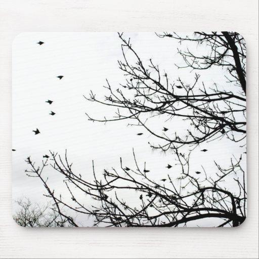 Pájaros blancos y negros que vuelan de los árboles tapete de ratones