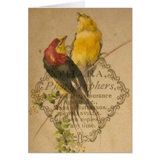 Pájaros bonitos del vintage tarjeta