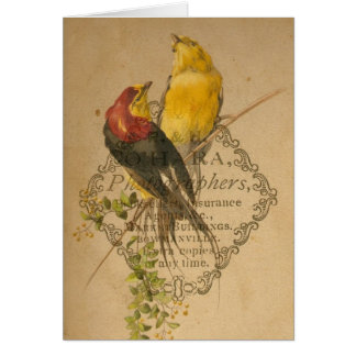 Pájaros bonitos del vintage felicitaciones