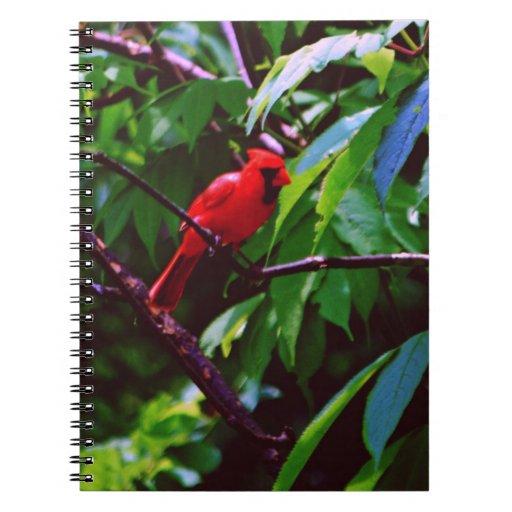 Pájaros bonitos libro de apuntes con espiral