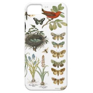 pájaros botánicos franceses y flores del vintage funda para iPhone SE/5/5s