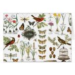 pájaros botánicos franceses y flores del vintage tarjeta pequeña