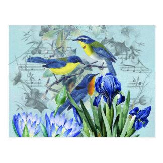 Pájaros cantantes florales ropa y regalos del tarjetas postales