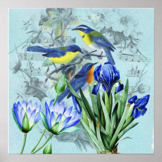 Pájaros cantantes florales ropa y regalos del vint póster