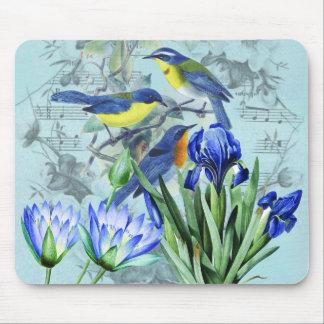 Pájaros cantantes florales ropa y regalos del vint tapetes de ratón